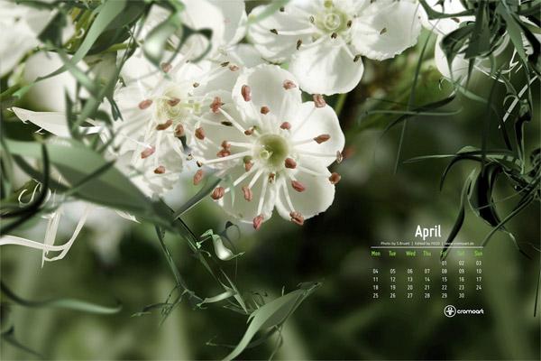 April 2011 Desktop Wallpaper Calendar 6