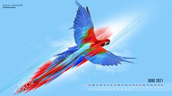 Parrot June 2011 Calendar