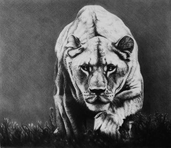 30 amazing realistic pencil drawings